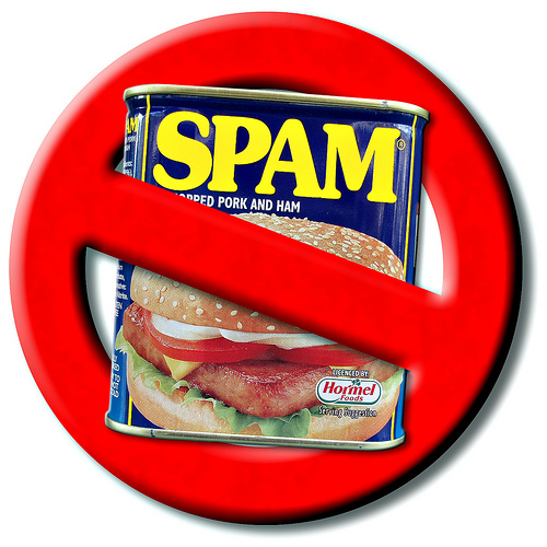 How to Prevent Spam in Your WordPress Blog