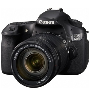 Choosing The Perfect Digital SLR Camera For Your Needs
