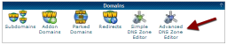 cPanel Advanced DNS Zone Editor