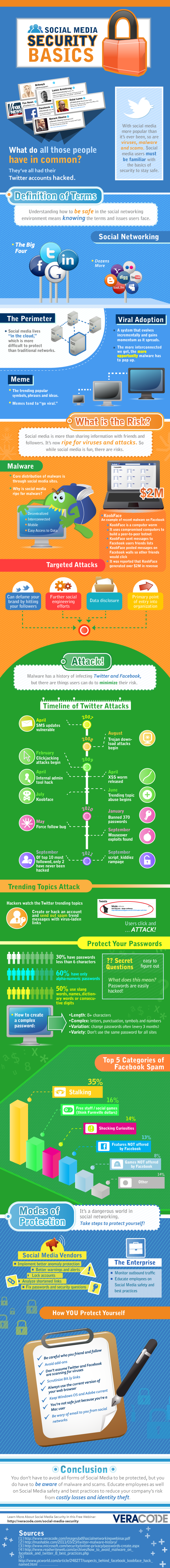 Social Media Security Basics [Infographic]