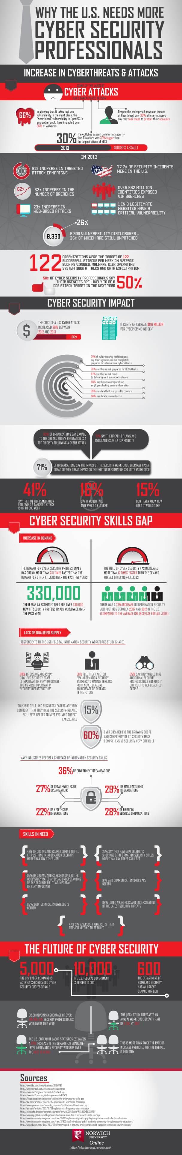 Why the US Needs More Cyber Professionals