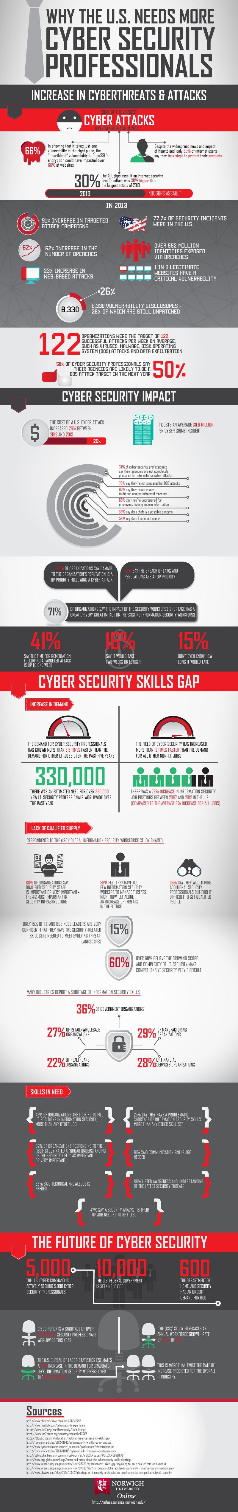 The Need for Cyber Security Professionals