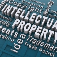 Understanding the Types of Software Piracy: Intellectual Property vs. Software Licensing
